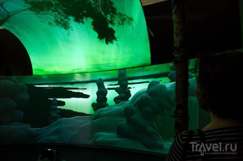 Северное сияние - нам повезло увидеть его не только в музее / Фото из Финляндии