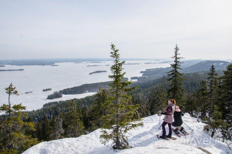 Виды Коли / Фото из Финляндии