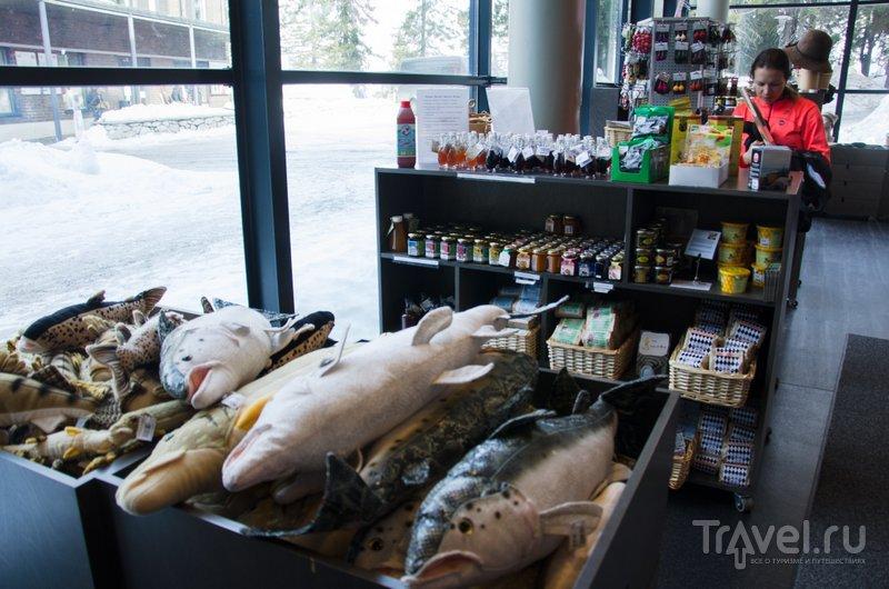 Мягкие игрушки в виде финских рыб / Фото из Финляндии