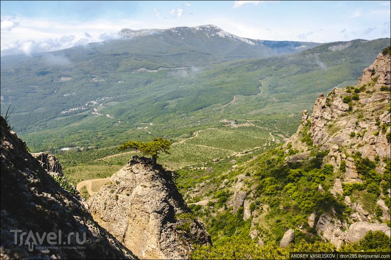 Крым. Гора Демерджи / Фото из России