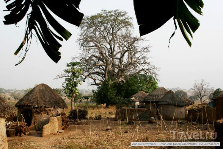 Путешествие, полное опасностей и приключений. Гана: кока-кола и Джизес превыше всего / Гана