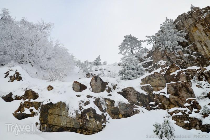 Ялта - Ай-Петри. Путешествие в зиму / Россия