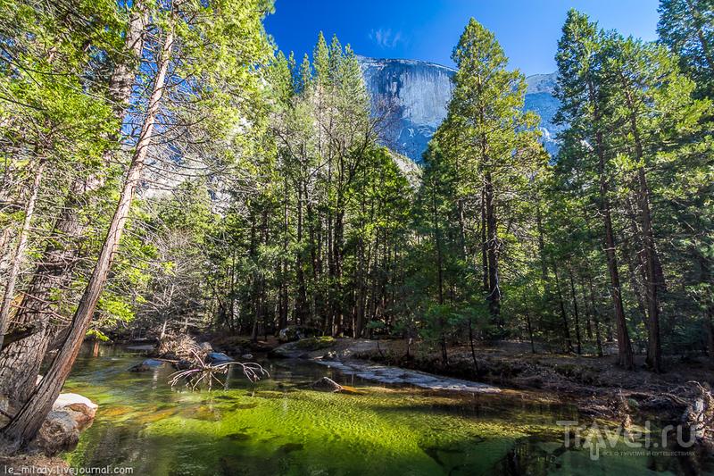 Национальный рай Йосемити / Фото из США