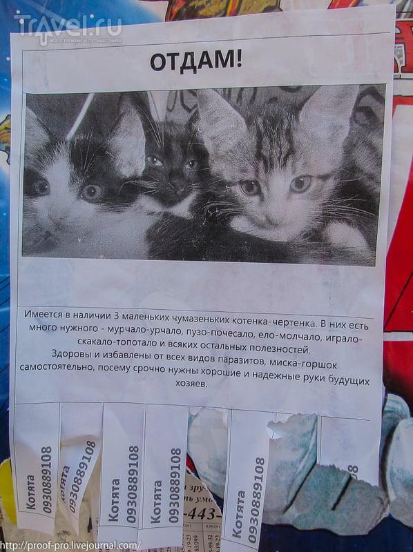 Город энергетиков. Славутич / Украина