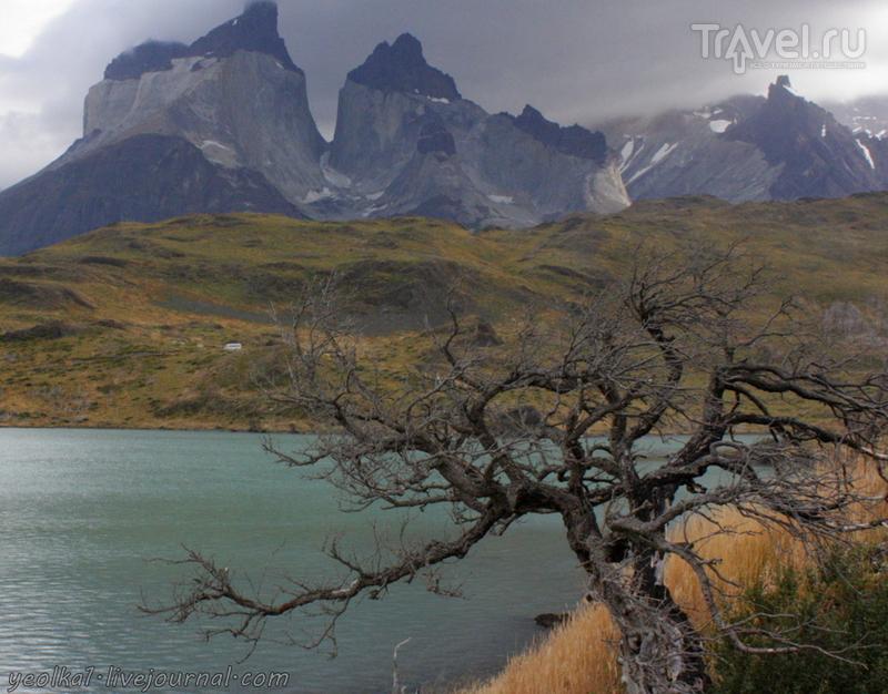 Патагония. Парк Торрес дель Пайне - что вам нужно знать / Фото из Чили