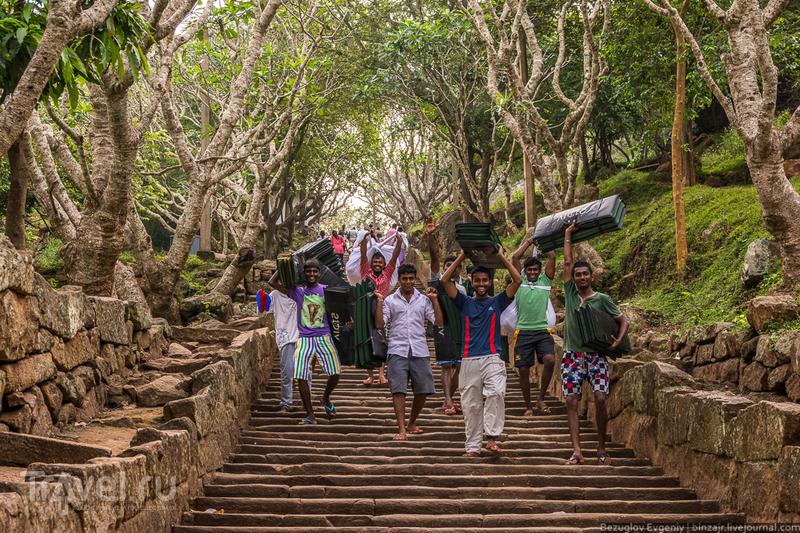 Колыбель цейлонского буддизма / Фото со Шри-Ланки