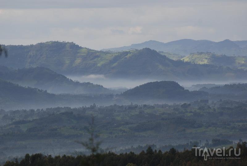 Туман в предгорьях