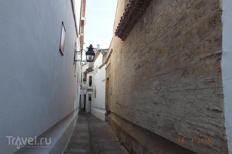 Испания в январе. Кордова / Испания