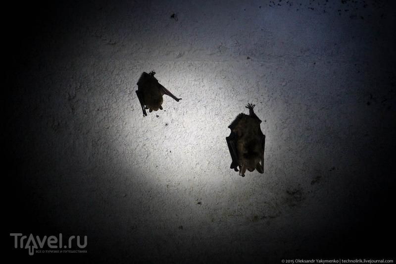 """""""Логово дождевого червя"""" и атомный бункер в Чехии / Польша"""