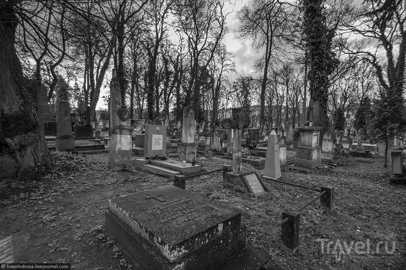 Мемориал-музей Лычаковское кладбище / Фото с Украины