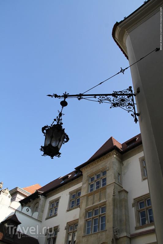 Драконы, сантехники и городские сумасшедшие Братиславы / Словакия