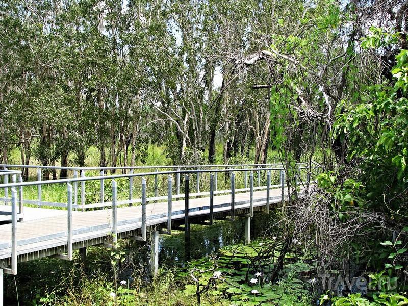 Дыхание дикой Австралии. Национальный парк Какаду / Австралия