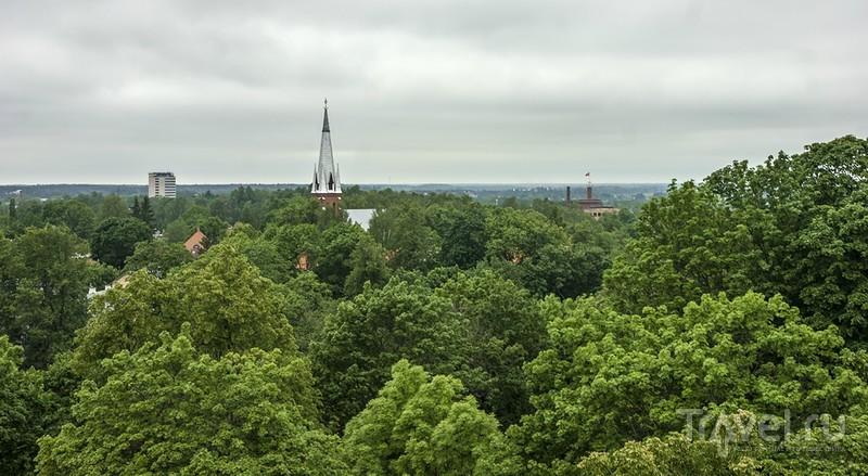 Тарту, холм Тоомемяги, Домский собор / Эстония