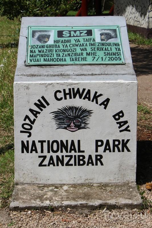 Занзибарский Красный Колобус Кирка / Танзания