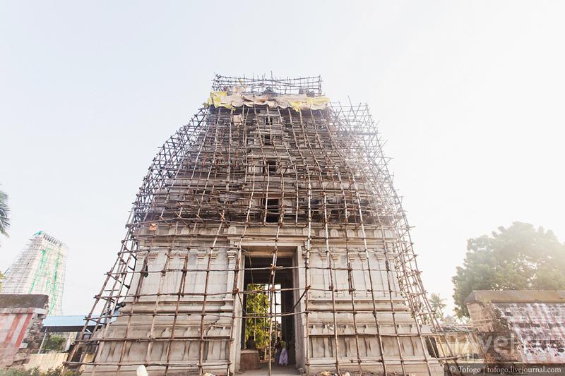 Индия. Рамешварам / Индия