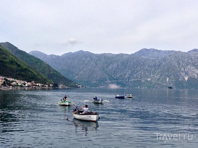Соревнования на деревянных лодках в Боко-Которском заливе / Черногория