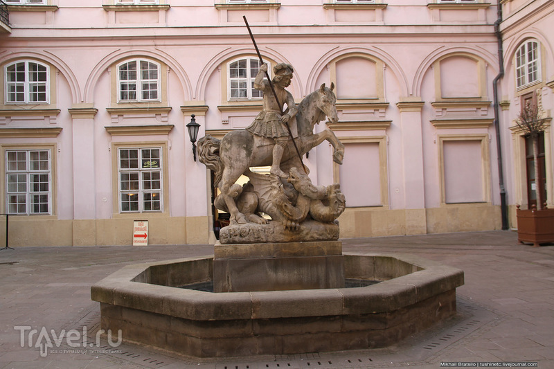 Гуляем по Братиславе с котиками / Словакия
