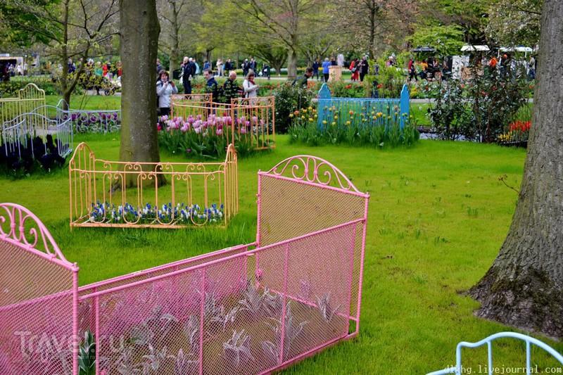 Кёкенхоф. Парк цветов. Прогулка / Нидерланды