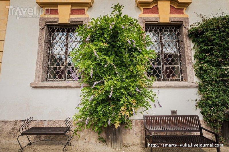 Чехия: Емниште, замок-отель / Фото из Чехии