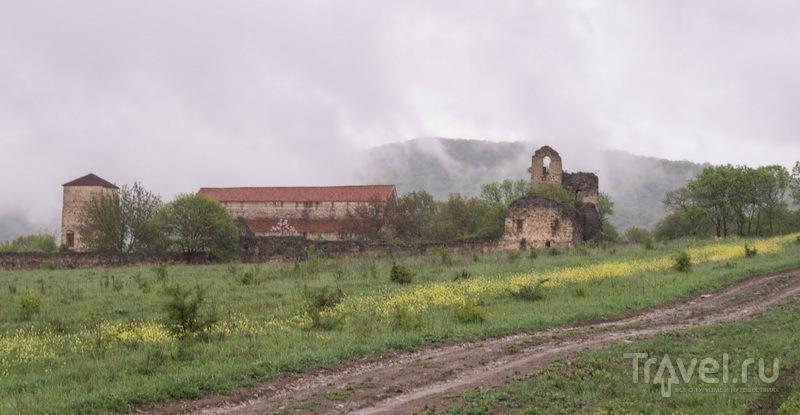Грузинские приключения сейчас / Грузия