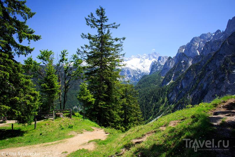 Gosaukammbahn. Канатная дорога Гозау. Австрия / Фото из Австрии