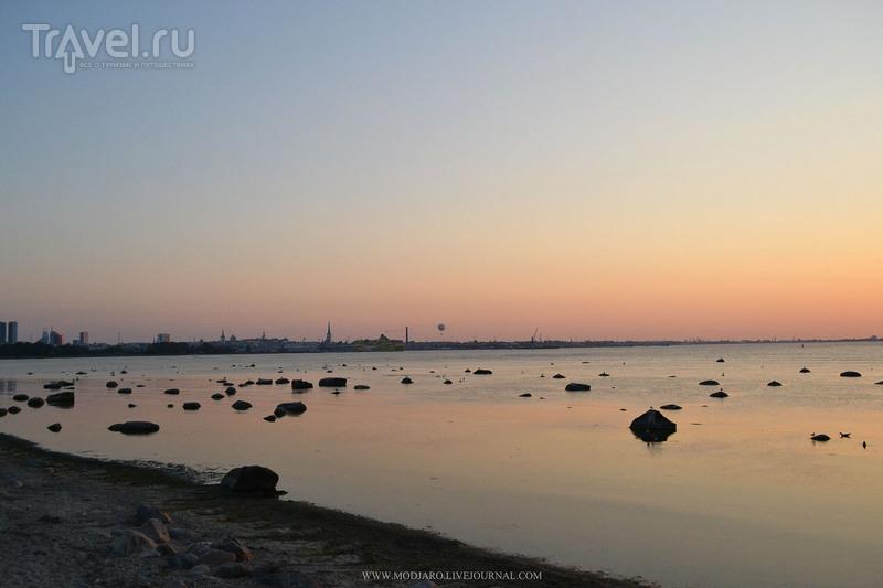 Пирита. Таллин / Фото из Эстонии