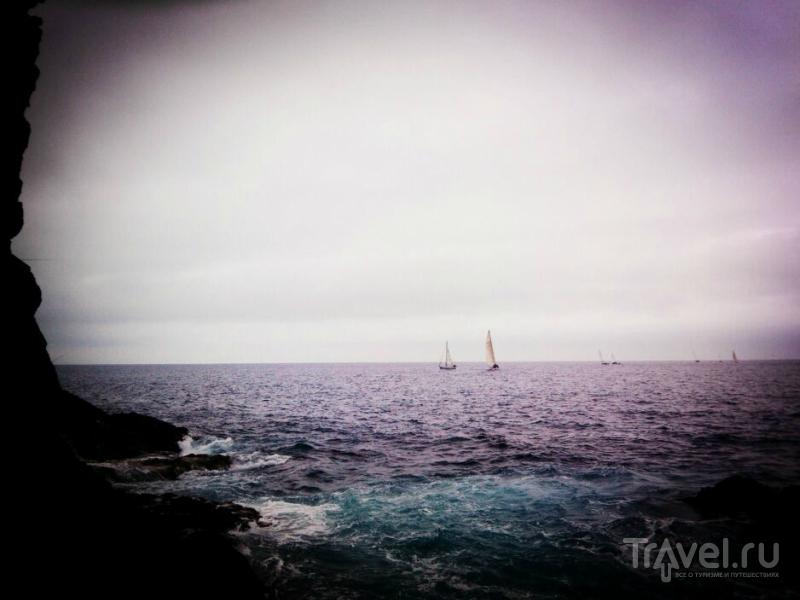 Мадейра: то вверх, то вниз / Португалия