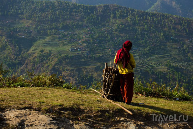 Спокойные будни непальской деревни / Фото из Непала