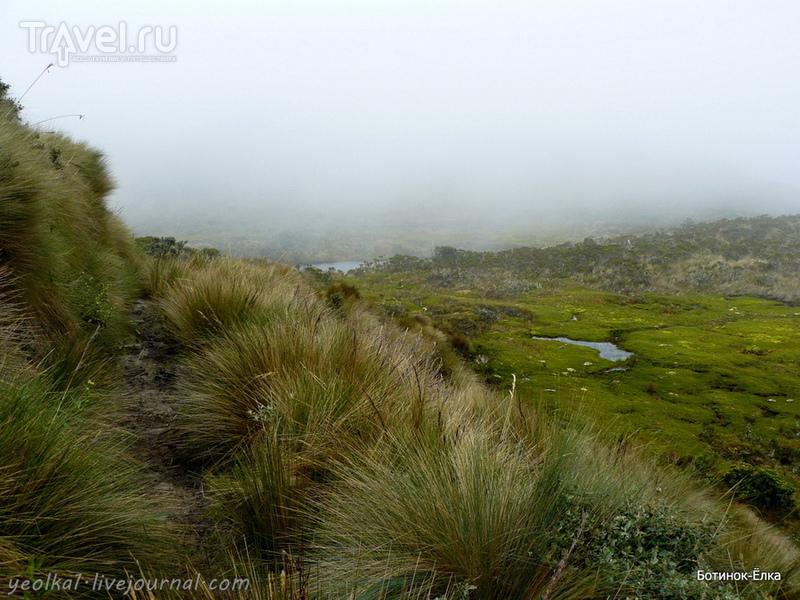 Колумбия - Con mucho gusto! Восхождение на вулкан Пурасе (4756 м) / Фото из Колумбии