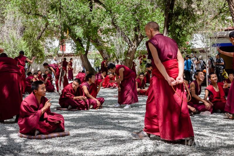 Тибет. Дебаты монахов в монастыре Sera / Китай