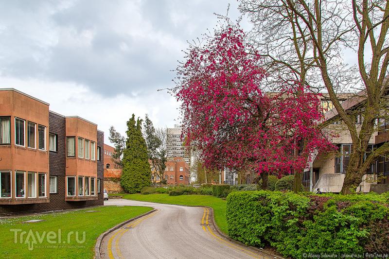 Ковентри / Coventry. Великобритания / Фото из Великобритании