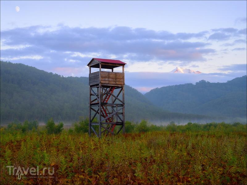 Путешествие по Камчатке: природный парк Налычево / Фото из России