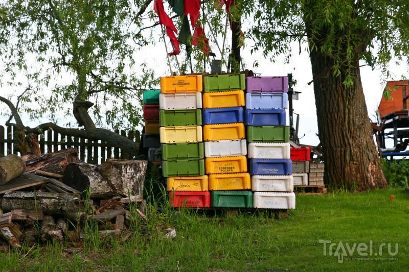 Путешествия по Прибалтике. Неринга (Литва) / Фото из Литвы