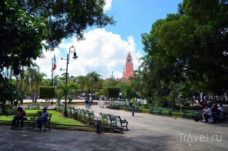 Мерида - город тысячи цветов / Мексика