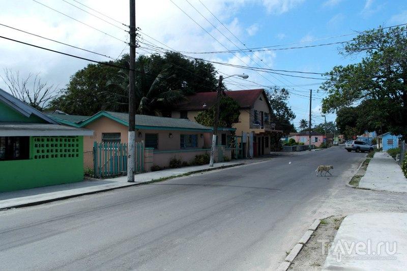 Нассау, Багамские острова - Жилой район и водонапорная башня / Багамские острова