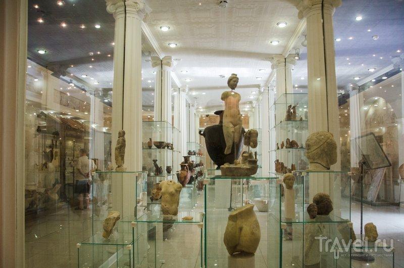 В 2008 году открылась выставка археологических находок, сделанных в Горгиппии