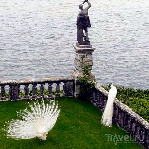 Лаго Маджоре. Бoрромейские острова / Италия