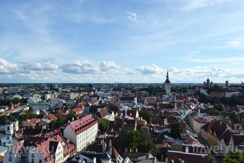 Истории и легенды Таллина