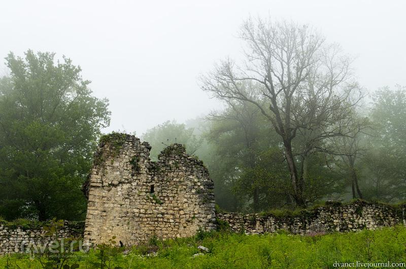 Абхазия. О Новом Афоне и чудовище / Фото из Абхазии