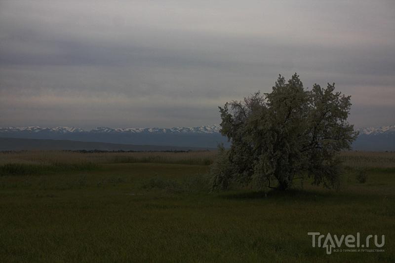 Восточный Казахстан / Казахстан