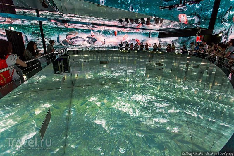 Expo 2015 в Милане. Павильон Таиланда / Фото из Таиланда
