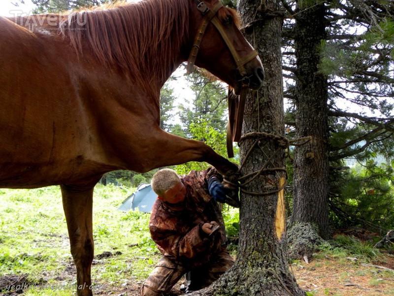 По Горному Алтаю на конях. Урочище Аярык - Каракокша - урочище Уладо / Россия