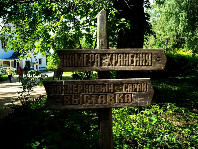 Музей-усадьба Поленово, или Где творил художник / Фото из России