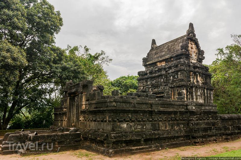 Шри-Ланка. Наланда Гедиге / Шри-Ланка