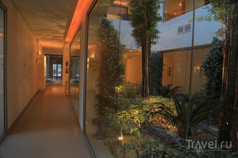 Центр талассотерапии в Тунисе / Фото из Туниса