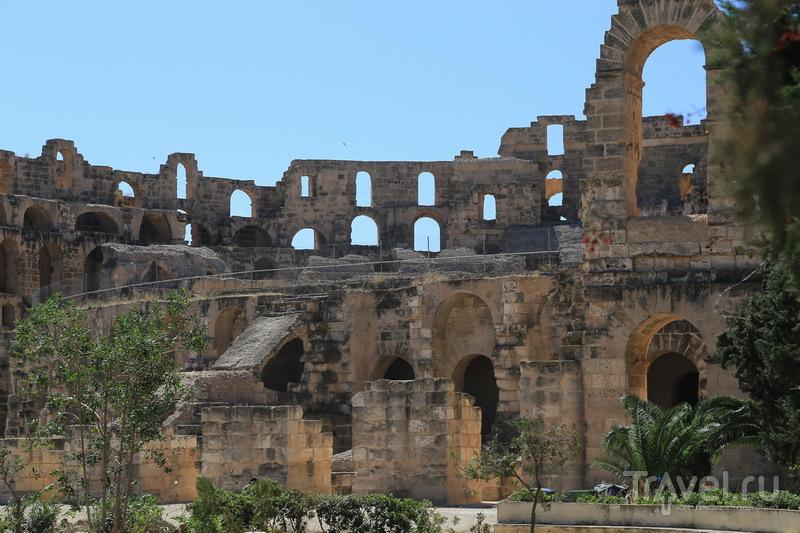 Эль-Джем - город одной достопримечательности / Фото из Туниса