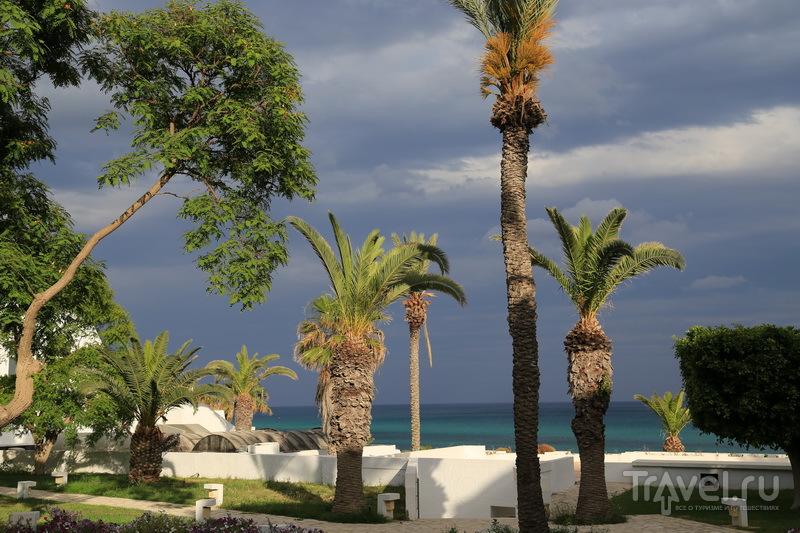 Отдых в Тунисе - это море / Фото из Туниса