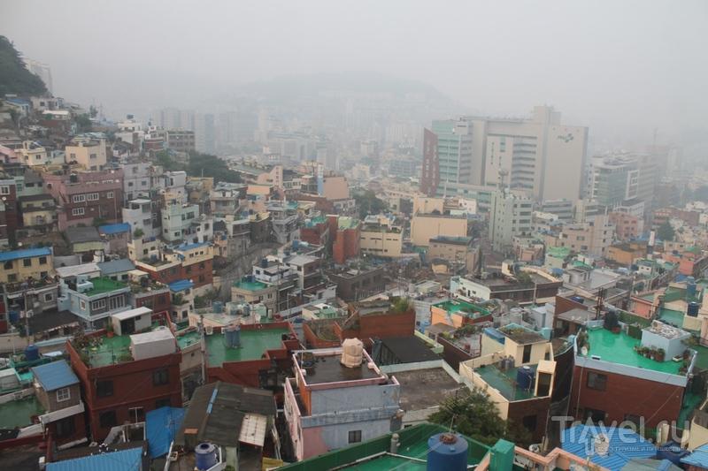 Южная Корея: итоги месяца / Южная Корея