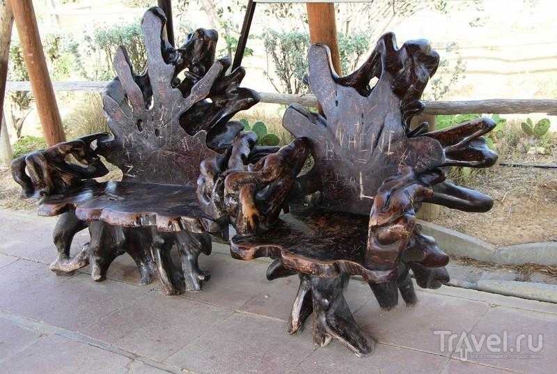 Тунис: Зоопарк Фригия и его обитатели / Тунис