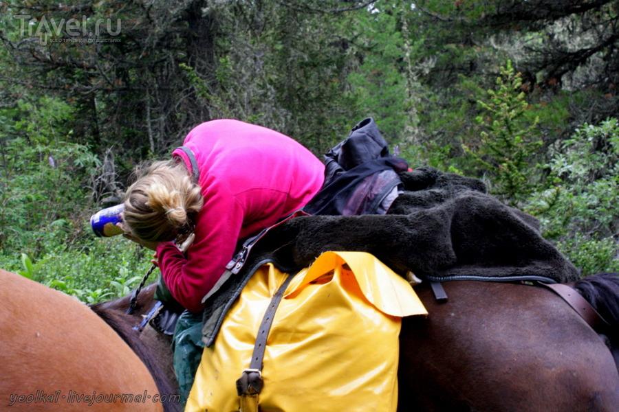 По Горному Алтаю на конях. Переход Ашпагач - Ложа / Россия